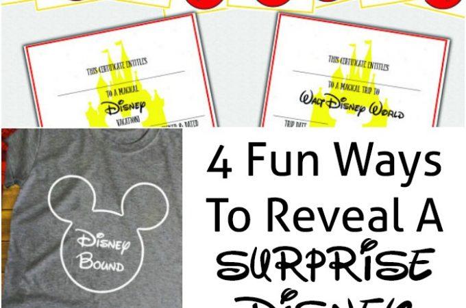 surprise Disney trip